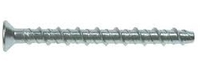 Ankerbolt Csk Head Torx Drive A4/316 Stainless Steel